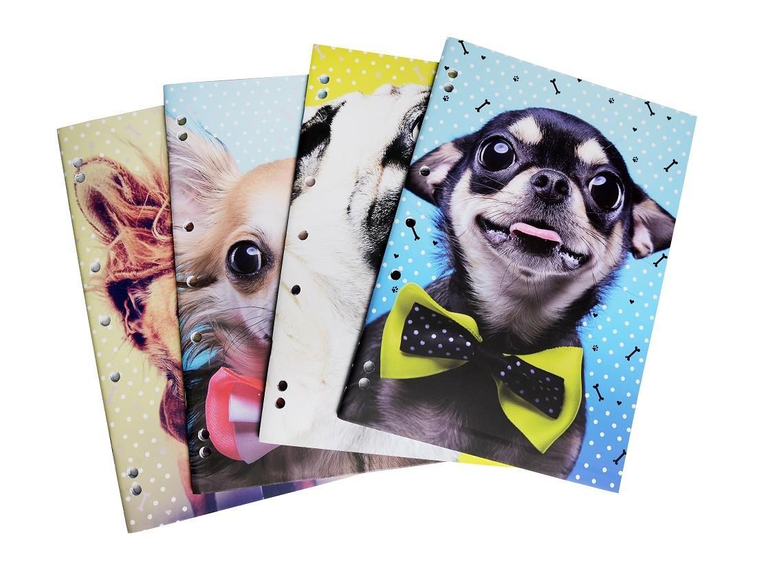 A4 Binder Book 4 Pack - Woof!