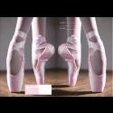 A4 Book Cover - Ballet