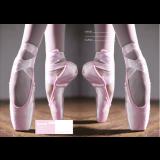 Exercise Book Cover - Ballet
