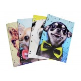 A4 Binder Book 4 Pack - Woof!