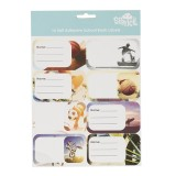 Name and Subject Label Stickers - Sports Collage