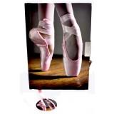 Secrets Notebook - Ballet